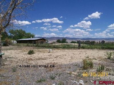 Montrose Residential Lots & Land For Sale: 61040 Hillsdale Drive