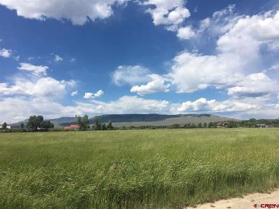 Gunnison Residential Lots & Land For Sale: 84 Sydney Court