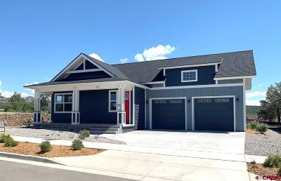 Durango Single Family Home For Sale: 161 Salt Brush Street