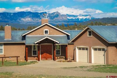 Pagosa Springs Single Family Home For Sale: 567 Tall Pine Place