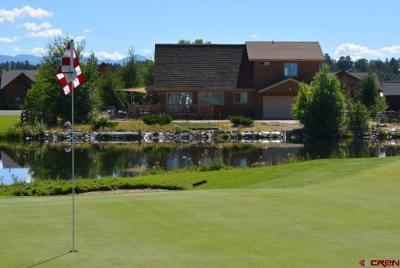 Pagosa Springs Single Family Home For Sale: 389 Blue Heron Circle