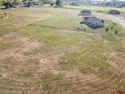 Montrose Residential Lots & Land For Sale: Lot 8