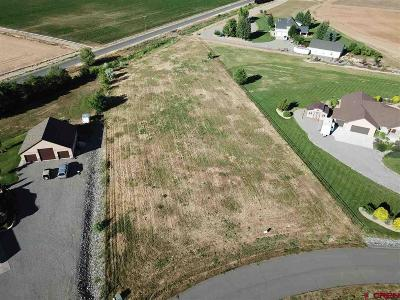 Montrose Residential Lots & Land For Sale: Lot 2