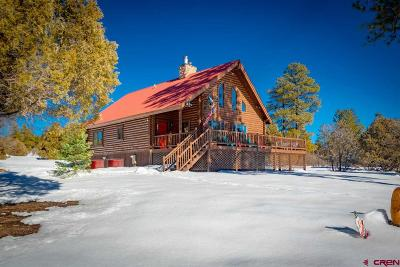 Pagosa Springs Single Family Home UC/Contingent/Call LB: 3190 Meadows Drive