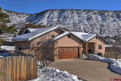Durango Single Family Home For Sale: 501 Cr 239