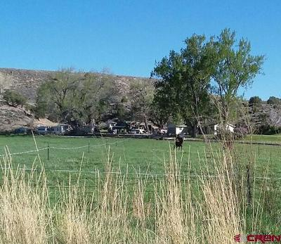 Montrose Residential Lots & Land For Sale: 70456 Miguel Road