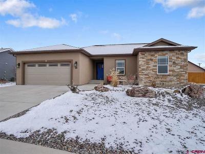 Montrose Single Family Home UC/Contingent/Call LB: 2744 Virginia Lane