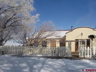 Del Norte Single Family Home For Sale: 41543 County Road G
