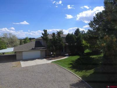 Montrose Single Family Home For Sale: 13720 6000 Road