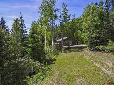 Pagosa Springs Single Family Home For Sale: 504 Weminuche Road