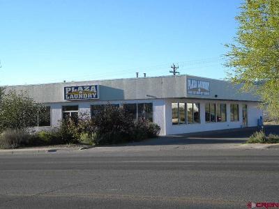 Cortez Commercial For Sale: 1419 E Main Street