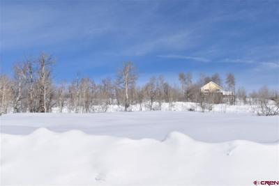 Crested Butte Residential Lots & Land For Sale: 708 Zeligman Street