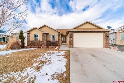 Montrose Single Family Home For Sale: 2308 Glen View Drive