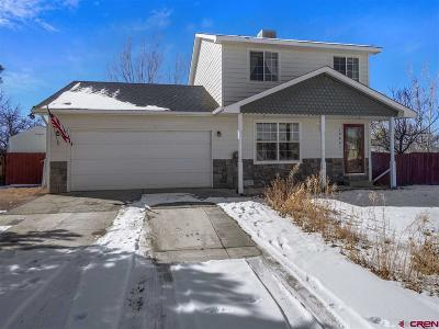 Montrose Single Family Home UC/Contingent/Call LB: 1980 Stan Drive