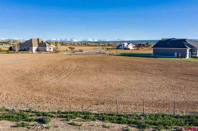 Montrose Residential Lots & Land For Sale: 16 6270 Road