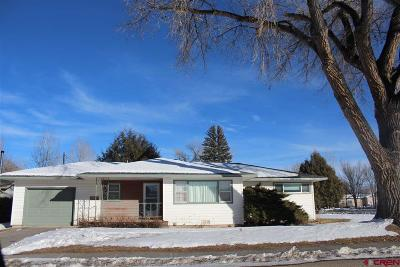 Single Family Home For Sale: 350 Bronk