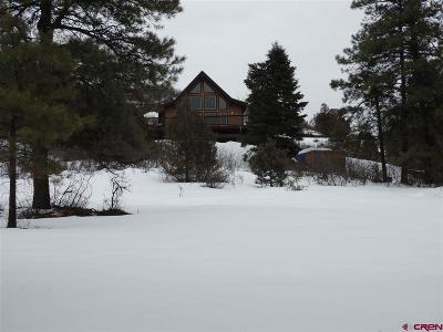 Pagosa Springs Single Family Home For Sale: 93 Haystack Circle