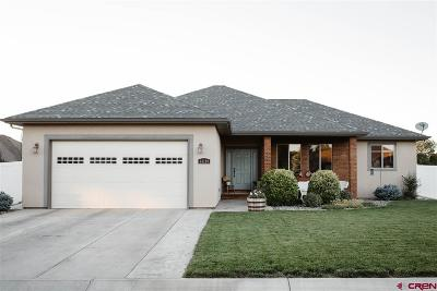 Montrose Single Family Home UC/Contingent/Call LB: 63159 Lavender Circle