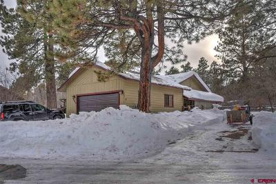 Durango Single Family Home UC/Contingent/Call LB: 151 Spruce Drive