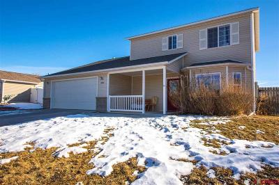Montrose Single Family Home For Sale: 2812 Caboose Drive