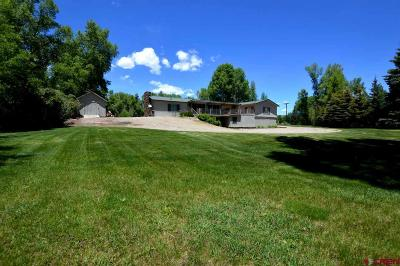 Gunnison County Single Family Home For Sale: 572 Camino Del Rio