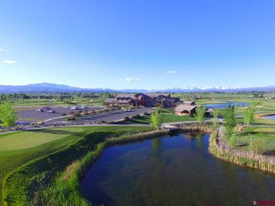 Montrose Residential Lots & Land For Sale: Stone Bridge Drive