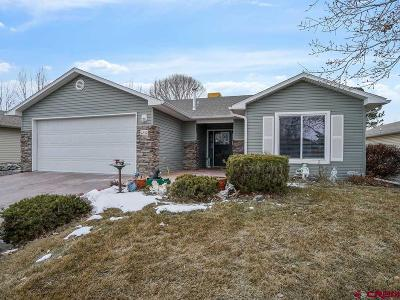 Montrose Single Family Home For Sale: 1252 Animas Street