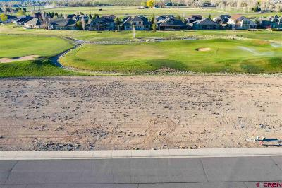 Montrose Residential Lots & Land For Sale: 905 Courthouse Peak Lane