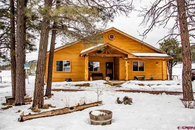 Pagosa Springs Single Family Home For Sale: 3000 Highway 84