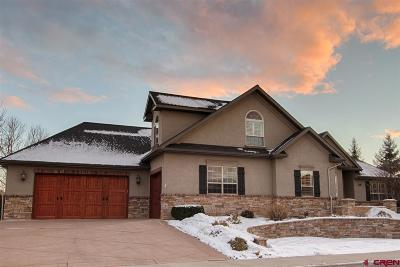 Montrose Single Family Home For Sale: 451 Cobble Drive