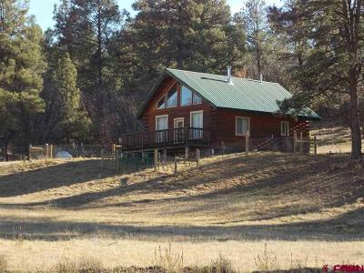 Pagosa Springs Single Family Home For Sale: 114 Pinto Place
