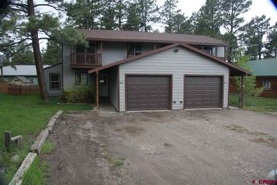 Pagosa Springs Multi Family Home For Sale: 858 Cloud Cap Avenue