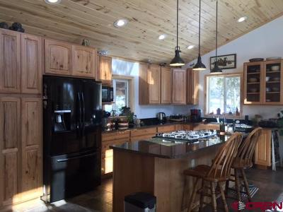 Mancos Single Family Home For Sale: 35510 Road J.8