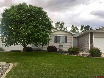 Delta CO Single Family Home For Sale: $249,900