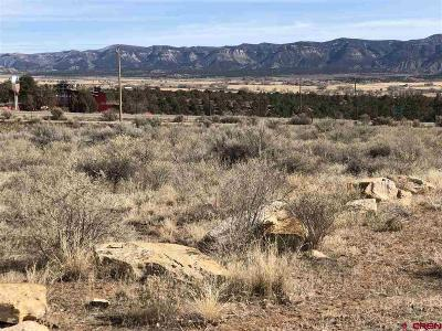 Cortez Residential Lots & Land For Sale: 1213 S Broadway #guess