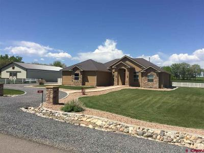 Delta CO Single Family Home For Sale: $629,000