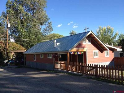 La Plata County Single Family Home For Sale: 250 Weston Drive