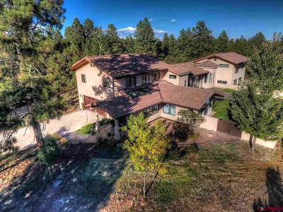 Durango Single Family Home For Sale: 221 S Elk Run