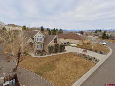 Montrose Single Family Home For Sale: 16880 Riverview Court