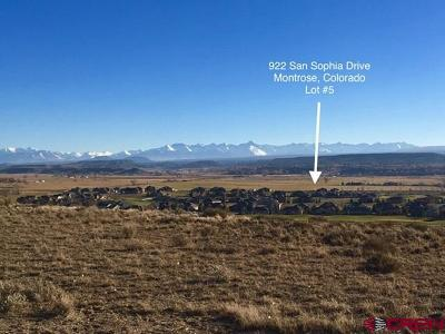 Montrose Residential Lots & Land For Sale: 922 San Sophia Drive