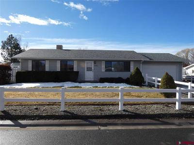 Montrose Single Family Home For Sale: 64130 Oakland Road