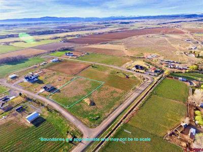 Olathe Residential Lots & Land NEW: Fuchsia Lane