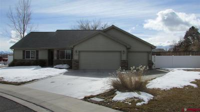 Montrose Single Family Home NEW: 3125 Crows Nest Court