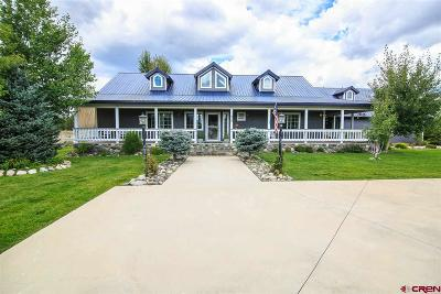 Pagosa Springs Single Family Home For Sale: 96 Teal