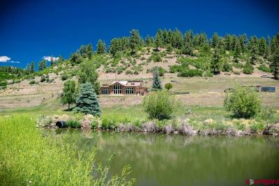 Pagosa Springs Single Family Home For Sale: 1869 County Road 326