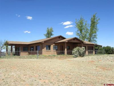 Cortez Single Family Home NEW: 22094 Road N
