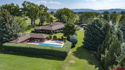 Montrose Single Family Home NEW: 838 Phillips Court