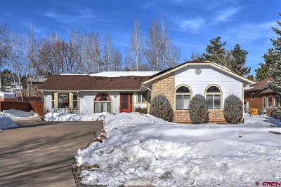 Durango Single Family Home UC/Contingent/Call LB: 111 Linda Court Court