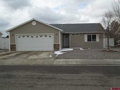 Montrose Single Family Home UC/Contingent/Call LB: 221 Bluegrass Court