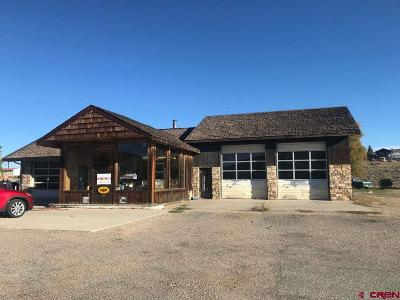 Gunnison County Commercial For Sale: 41965 E Us Hwy 50 Highway